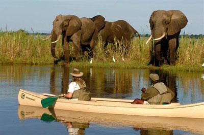 Sept.Zambia